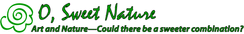 O, Sweet Nature Logo. Art and nature. Could there be a sweeter combination?