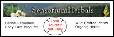 Sensorium Herbals. Herbal Remedies, body care products. Treat yourself naturally.