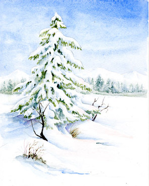 Watercolor painting of a winter scene snow on an evergreen tree.